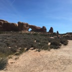 Return to Arches National Park